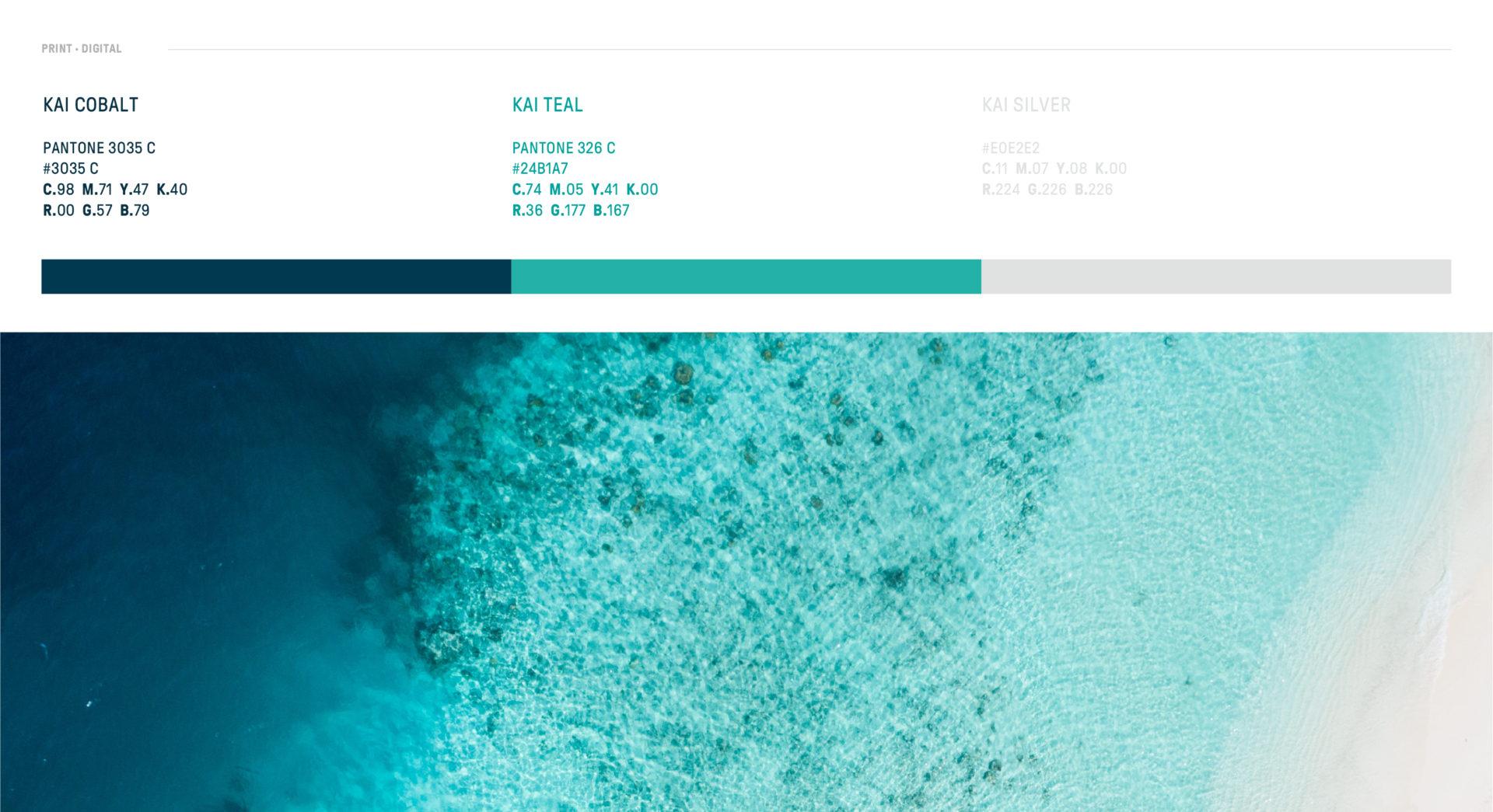 kai-pasifika-colour-branding
