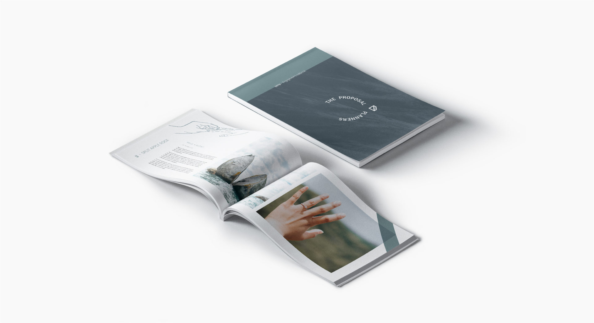 Proposal Planners magazine hand