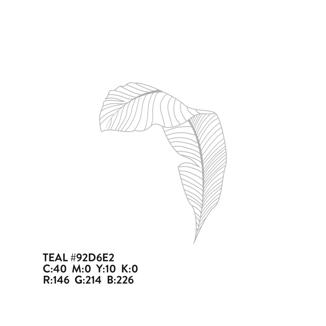 Wonder Wall leaf illustration